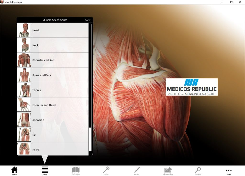 Download Visible Body Muscle Premium for PC Free (Direct Link)