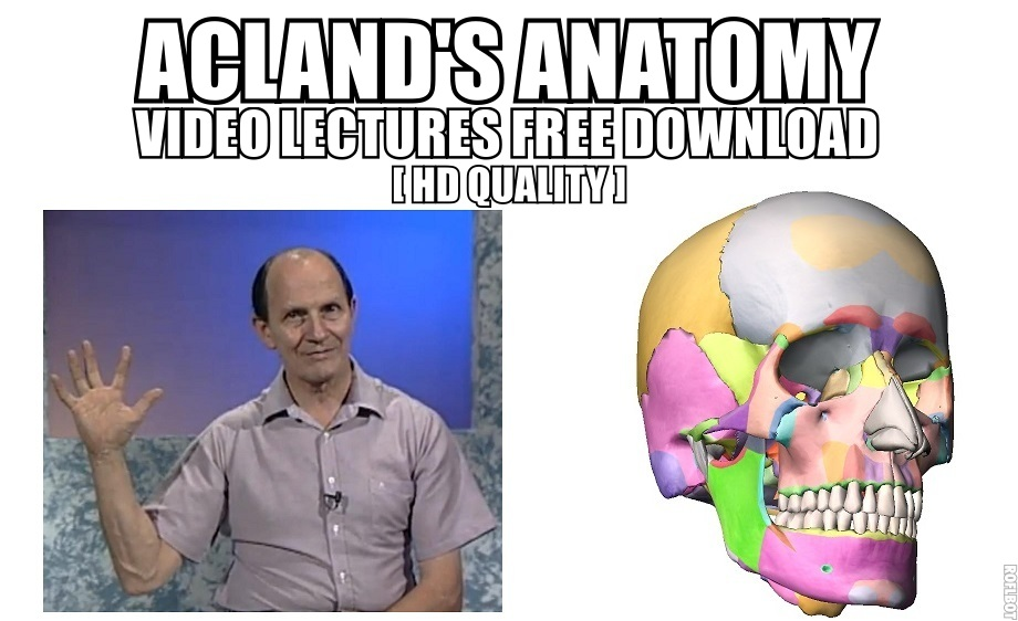 Acland Anatomy Video Lectures Free Download Hd Quality Medicos