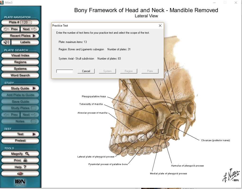 Netter Interactive Atlas Of Human Anatomy Free Download Direct Link