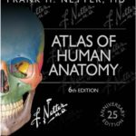 Netter's Atlas of Human Anatomy 6th Edition