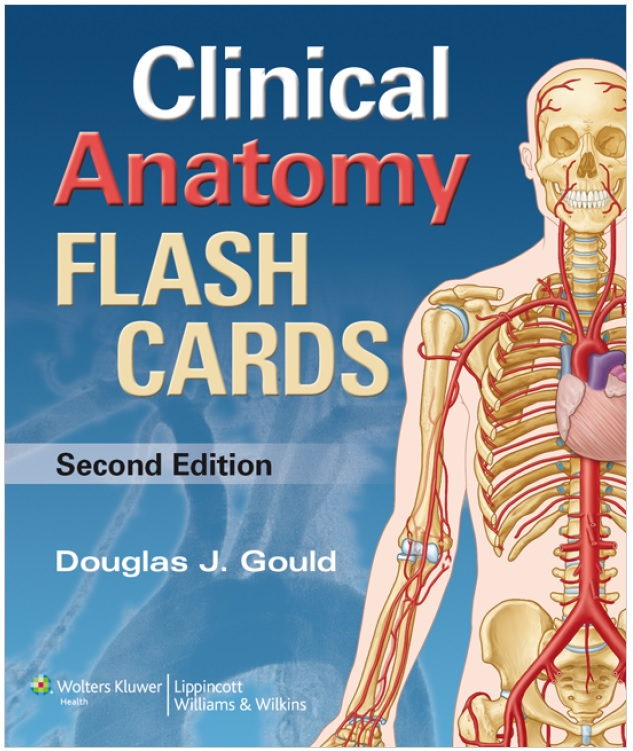 Moores Clinical Anatomy Flash Cards Pdf Free Download Direct Link