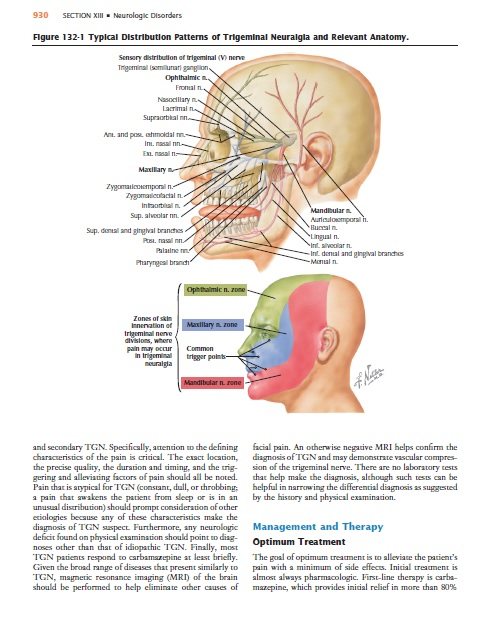 Netter's Internal Medicine 2nd Edition PDF Free Download