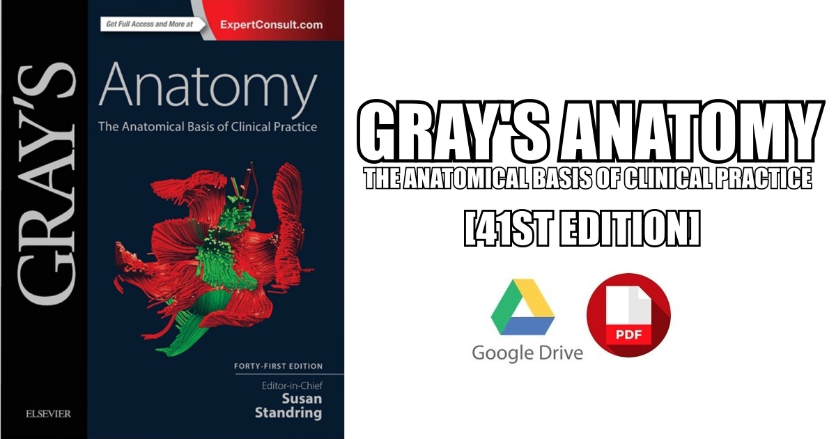 Grays Anatomy The Anatomical Basis Of Clinical Practice Pdf Free