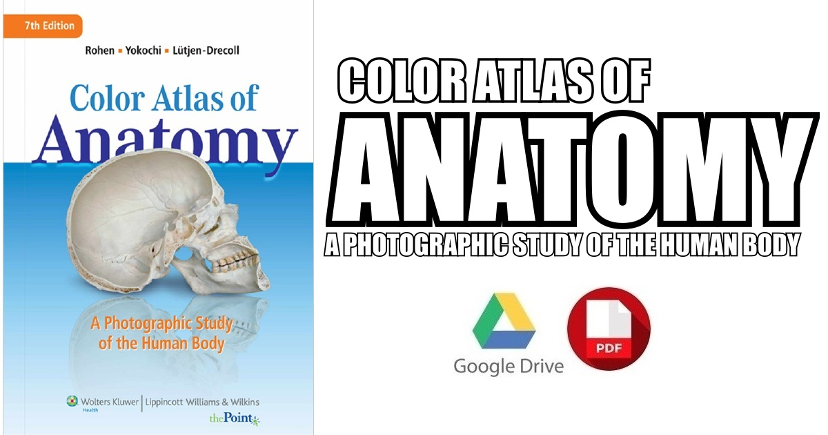 Color Atlas Of Anatomy A Photographic Study Of The Human Body Pdf
