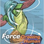 FORCE: Drawing Human Anatomy PDF