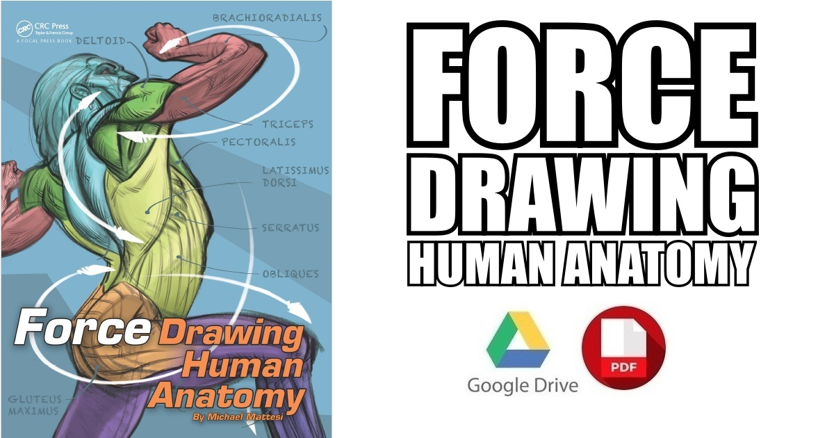 FORCE: Drawing Human Anatomy PDF Free Download [Direct Link]
