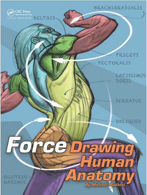FORCE: Drawing Human Anatomy PDF