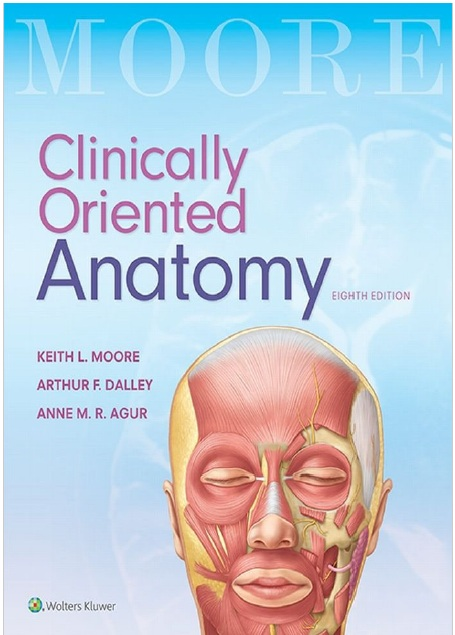Clinically Oriented Anatomy 8th Edition PDF