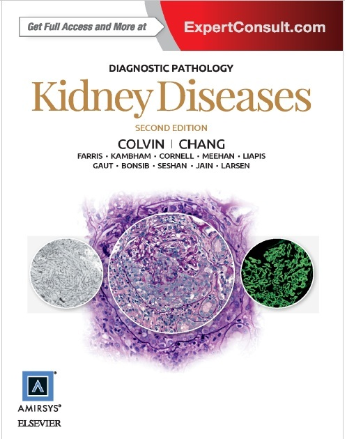 Diagnostic Pathology: Kidney Diseases 2nd Edition PDF