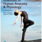 Essentials of Human Anatomy & Physiology 12th Edition PDF