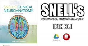 Snell's Clinical Neuroanatomy 8th Edition PDF