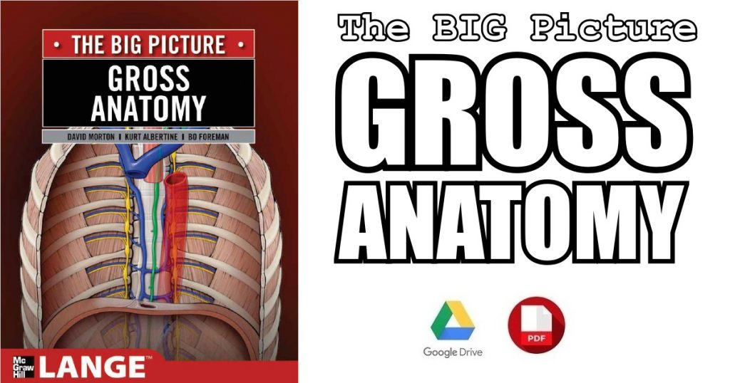 The Big Picture: Gross Anatomy PDF