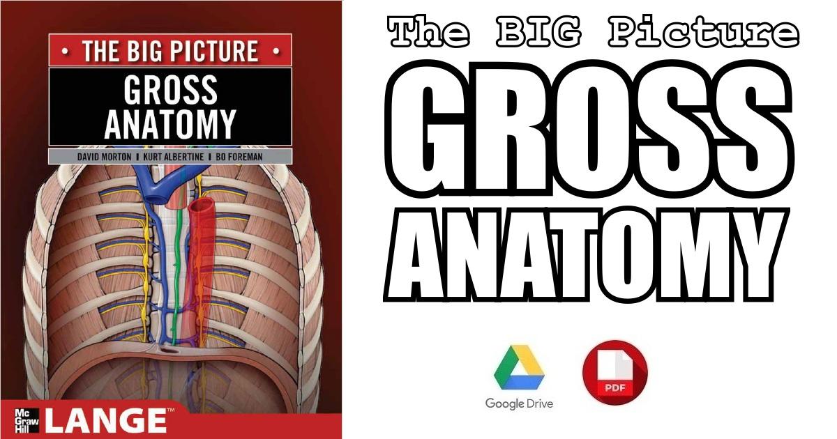 A Bigger Picture PDF Free Download