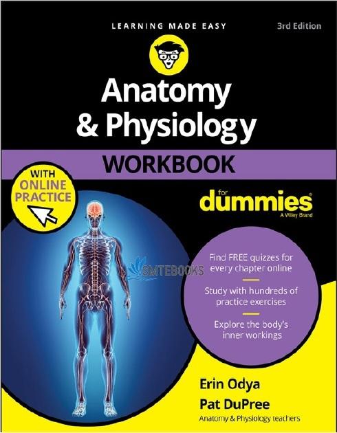 Anatomy & Physiology Workbook For Dummies 3rd Edition PDF