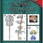 Atlas of Functional Neuroanatomy 2nd Edition PDF