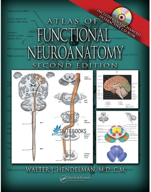 Atlas of Functional Neuroanatomy 2nd Edition PDF