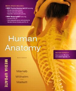 Human Anatomy Media Update 6th Edition PDF