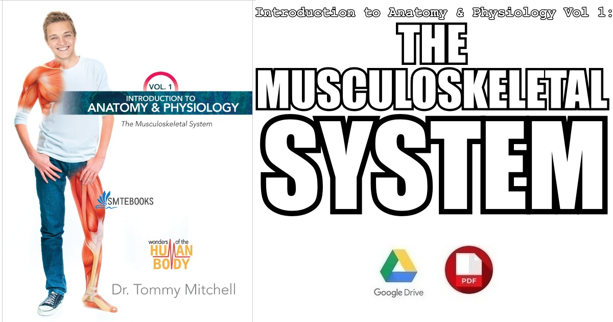 Introduction to Anatomy & Physiology Vol 1: The Musculoskeletal System PDF