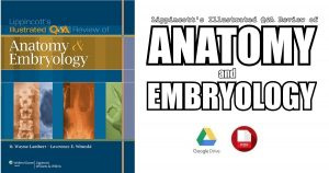 Lippincott's Illustrated Q&A Review of Anatomy and Embryology 1st Edition PDF
