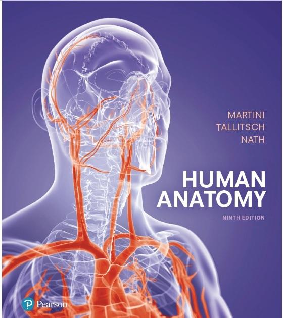 Martini: Human Anatomy 9th Edition PDF
