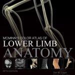 McMinn's Color Atlas of Lower Limb Anatomy 5th Edition PDF