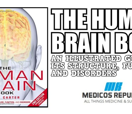 The Human Brain Book PDF