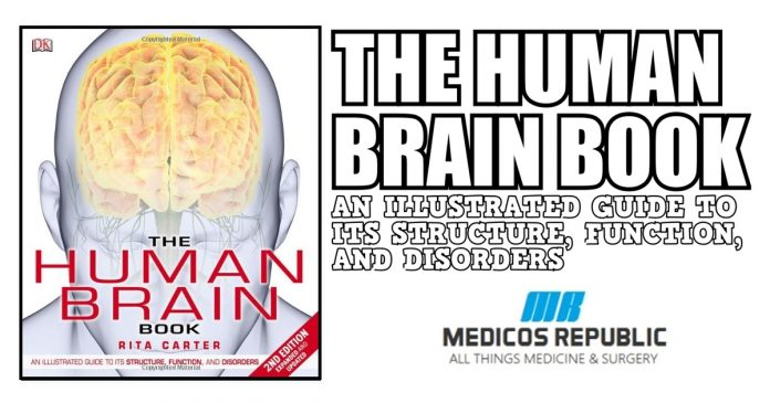 The Human Brain Book PDF