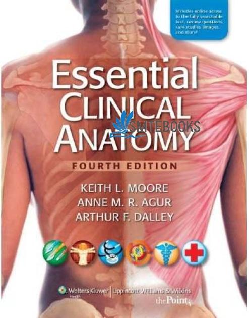 Essential Clinical Anatomy 4th Edition PDF