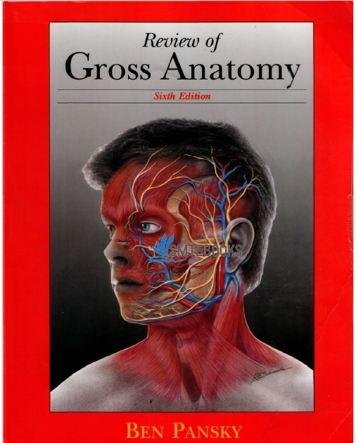Review of Gross Anatomy 6th Edition PDF