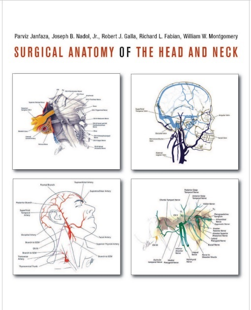 Surgical Anatomy of the Head and Neck 1st Edition PDF