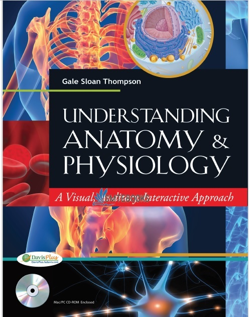 Understanding Anatomy and Physiology: A Visual, Auditory, Interactive Approach PDF