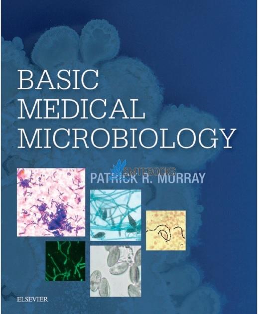 Basic Medical Microbiology 1st Edition PDF