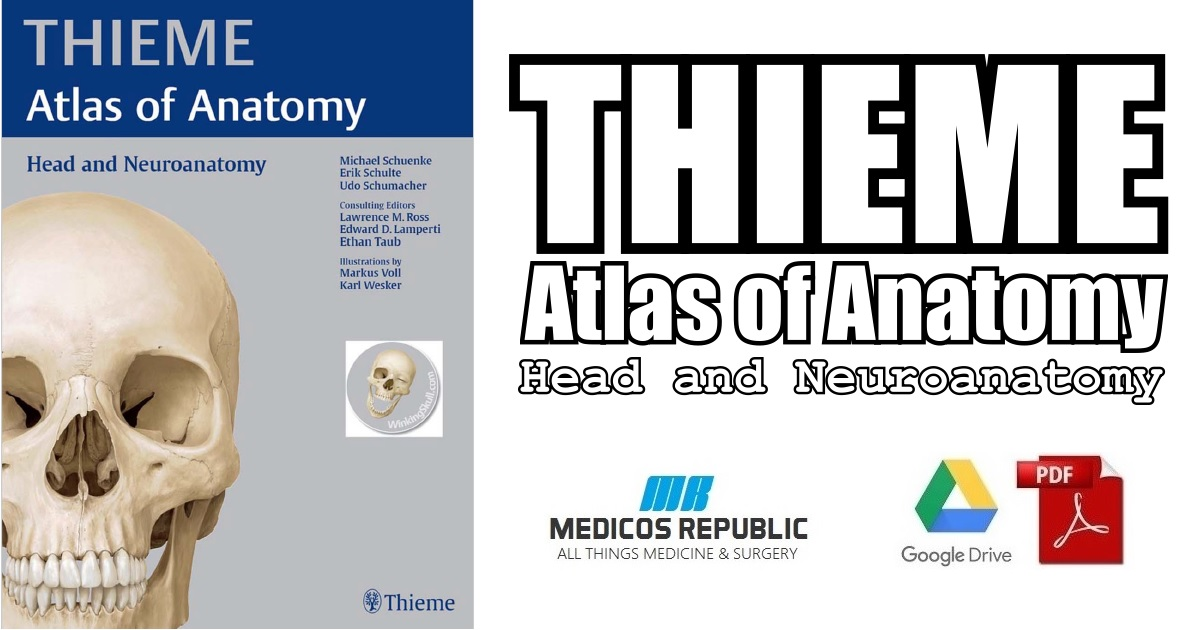 Head and Neuroanatomy (THIEME Atlas of Anatomy) PDF