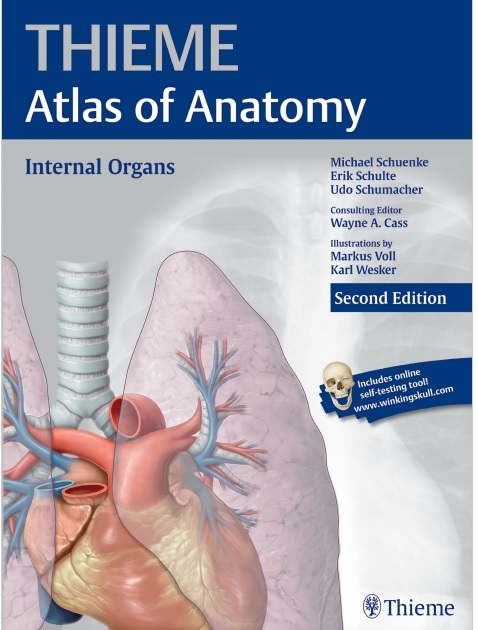 Internal Organs (THIEME Atlas of Anatomy) PDF