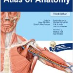 Thieme Atlas of Anatomy 3rd Edition PDF