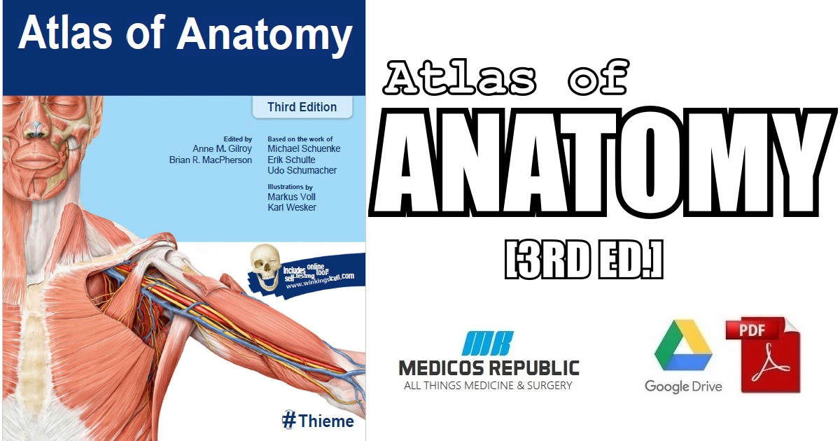 Thieme Atlas of Anatomy 3rd Edition PDF Free Download