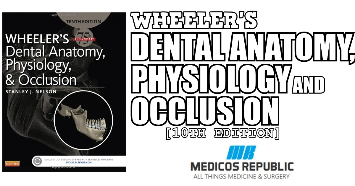 Wheeler's Dental Anatomy, Physiology and Occlusion 10th