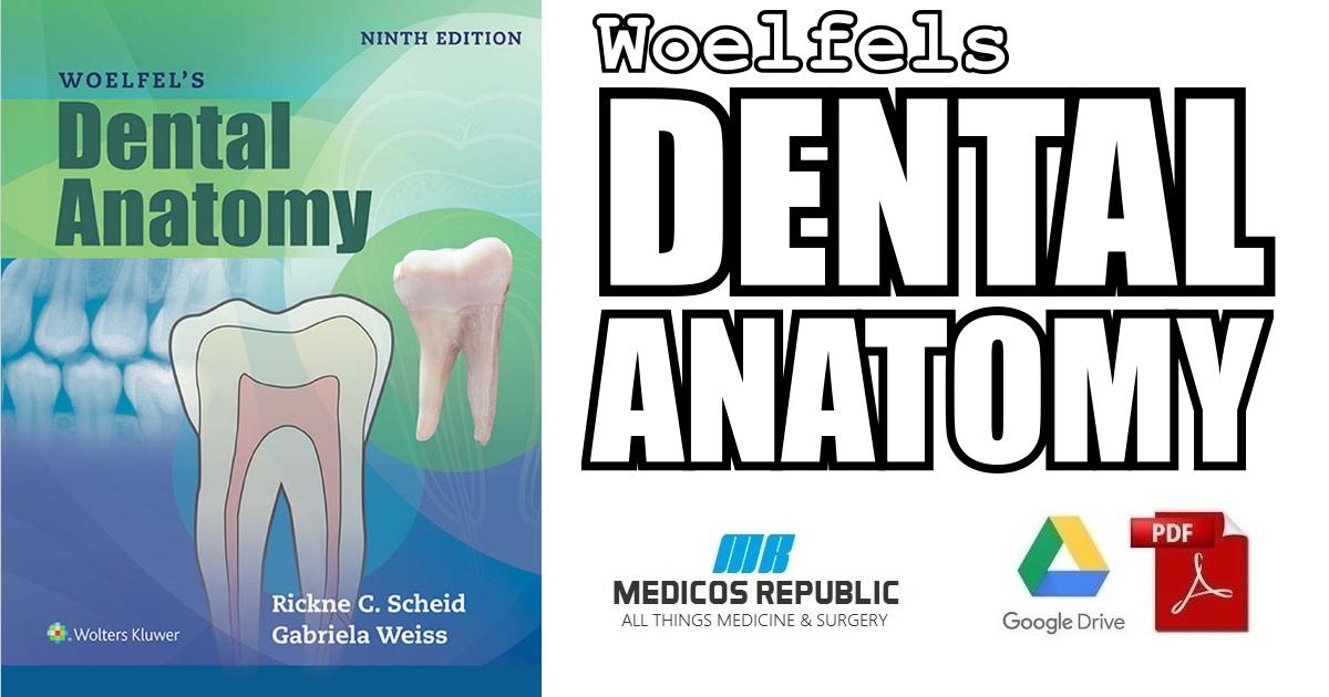 Woelfels Dental Anatomy 9th Edition PDF