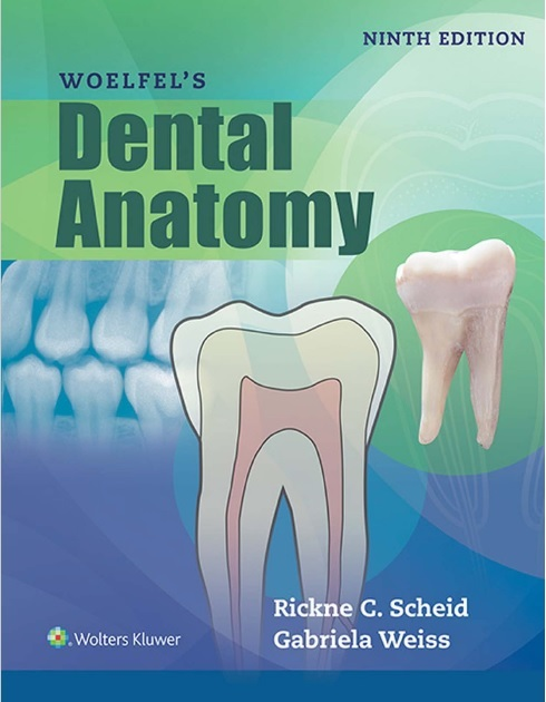 Woelfels Dental Anatomy 9th Edition PDF