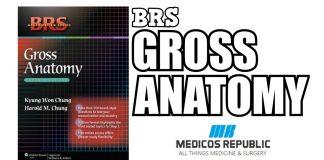 BRS Gross Anatomy 7th Edition PDF