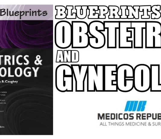 Blueprints Obstetrics and Gynecology 6th Edition PDF