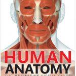 Human Anatomy: The Definitive Visual Guide PDF