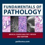 Fundamentals of Pathology Pathoma 2021